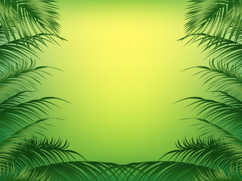 Palm Frame Backgrounds