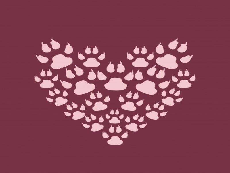 Paw Print Heart Clipart Backgrounds