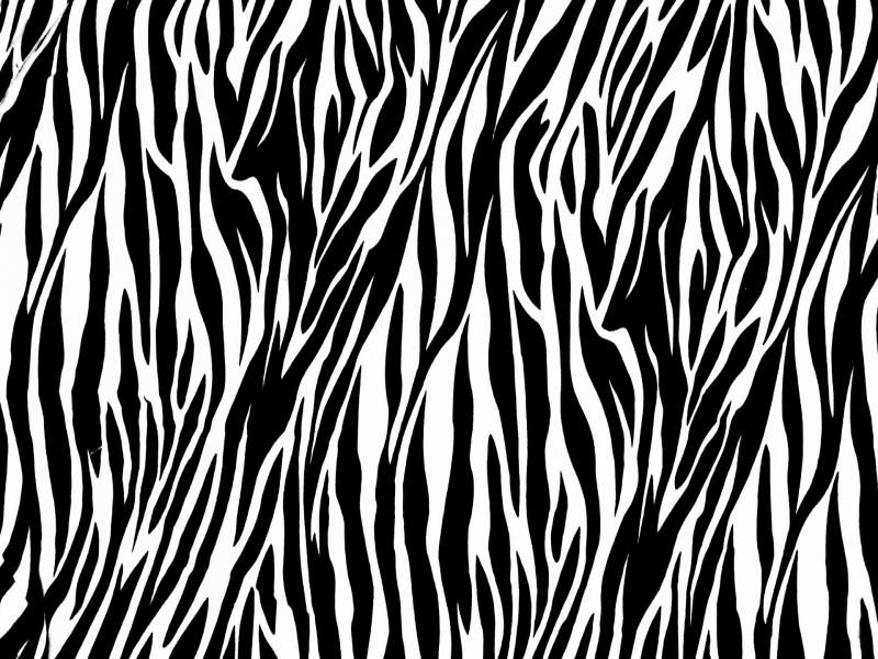 Contemporary zebra print picture frame collection custom picture pics photos zebra print frame backgrounds for powerpoint templates toneelgroepblik Gallery