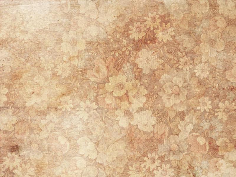 Pink Flower Hd Texture Backgrounds
