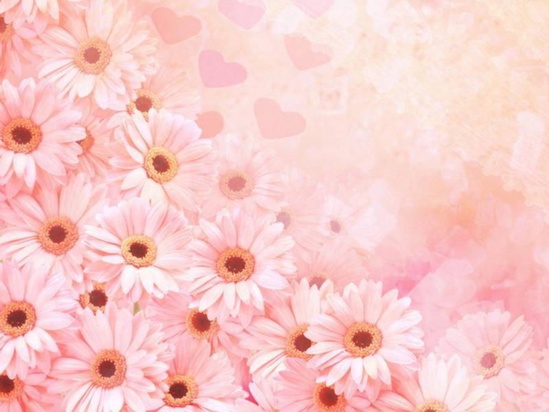 Pink Flower Template Design Backgrounds For Powerpoint Templates