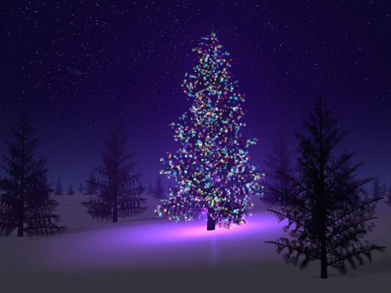 Purple Christmas Trees Clipart Backgrounds
