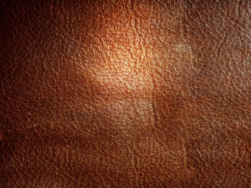 Skin Leather Texture Backgrounds