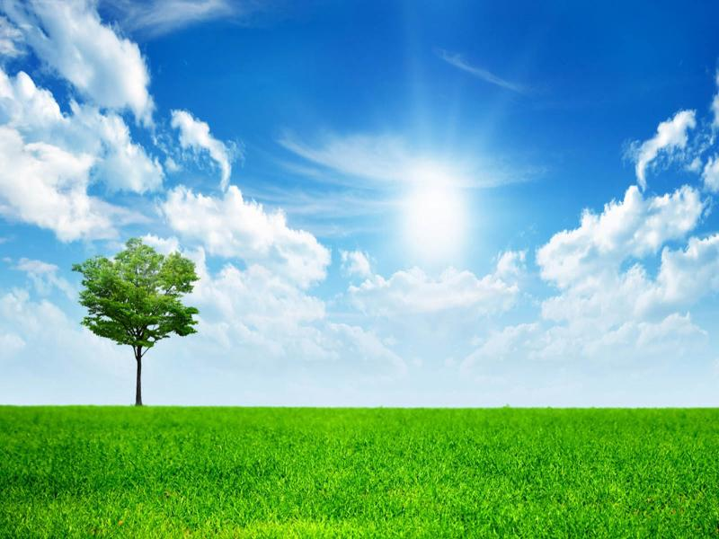 spring nature image backgrounds for powerpoint templates