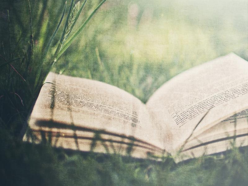 Story Books Slides Backgrounds