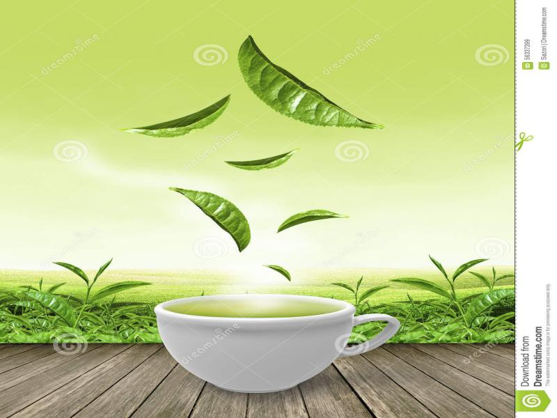 Tea Cup Green Tea Cup On Wooden Floor Stock   Template Backgrounds