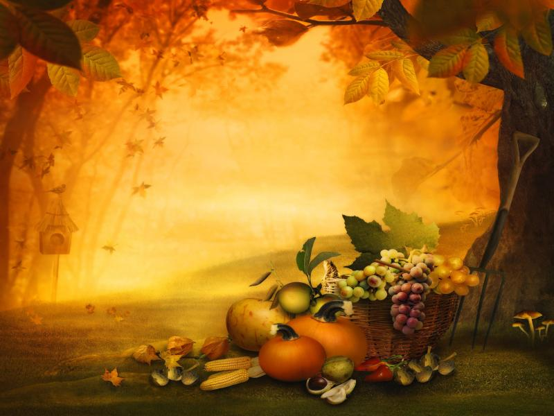 Thanksgiving Design Backgrounds For Powerpoint Templates