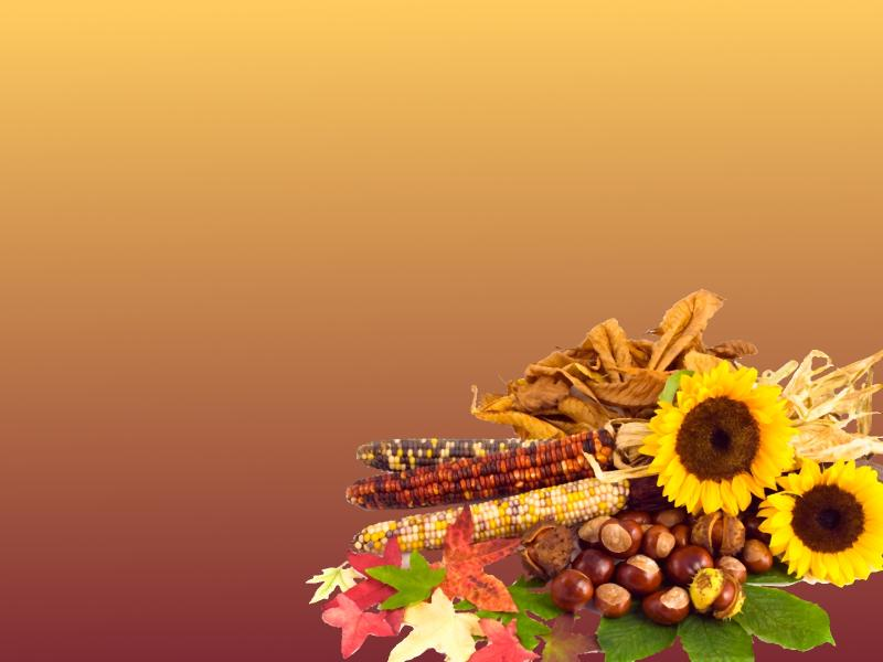 Thanksgiving Slides Backgrounds For Powerpoint Templates