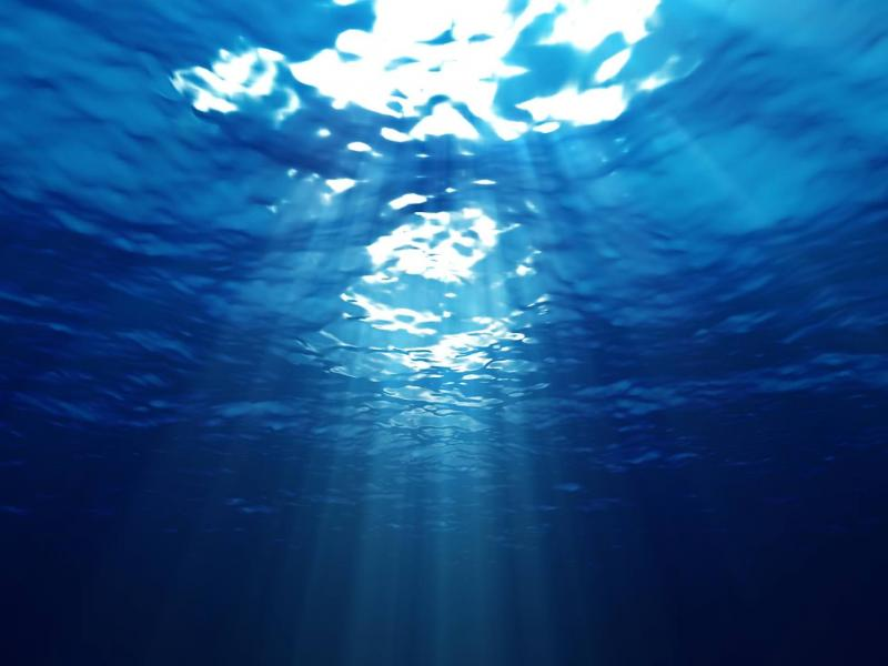 Under The Water Design Backgrounds