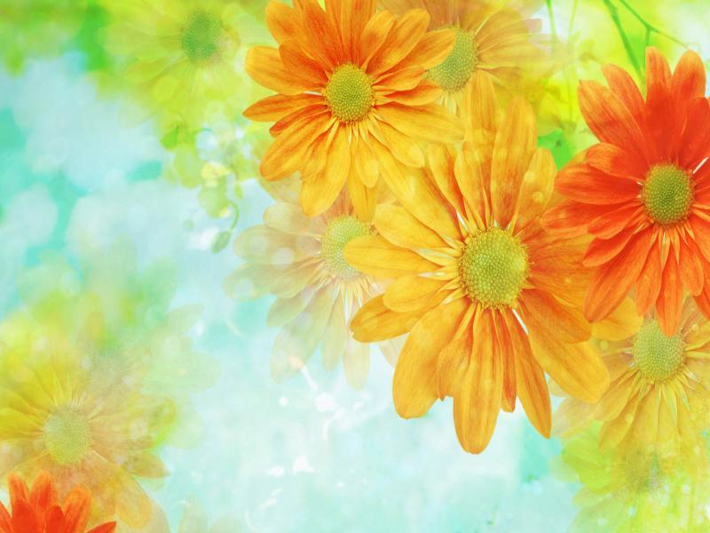 Wallpaper Flower Arts Template Backgrounds