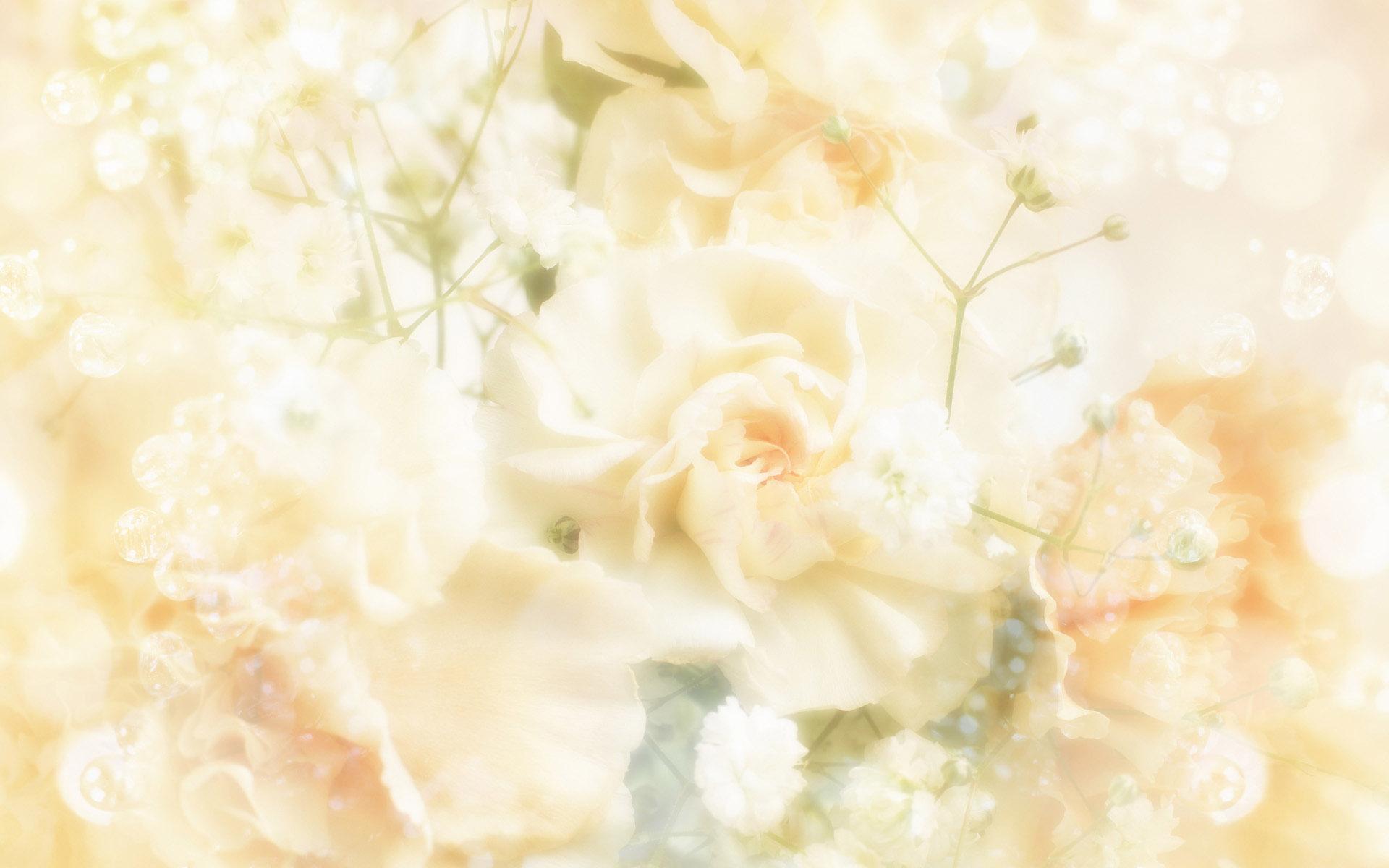 Wedding Design Backgrounds