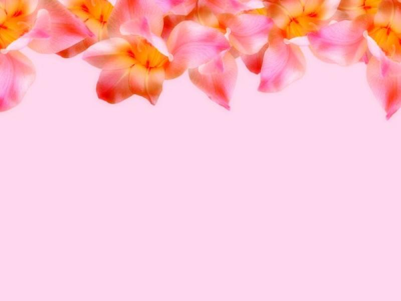 White Mothers Day Flowers Graphic Backgrounds for Powerpoint