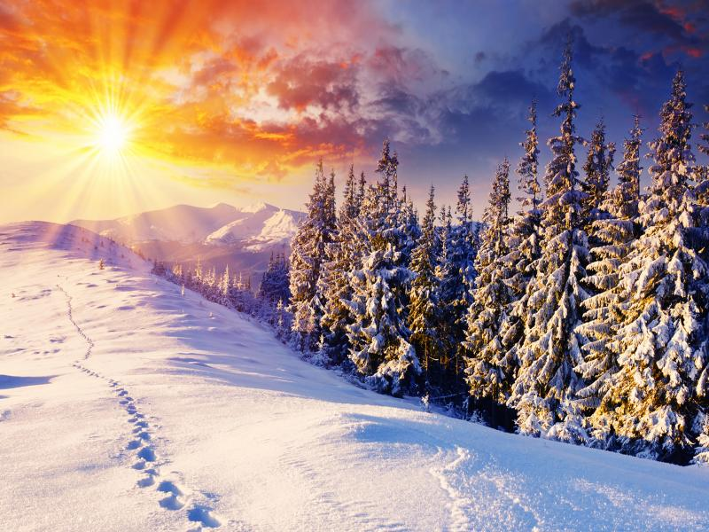 Winters  Bests Download Backgrounds
