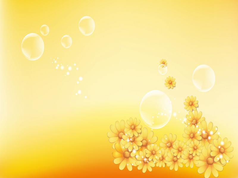 Yellow Flower  Rose Pictures image Backgrounds