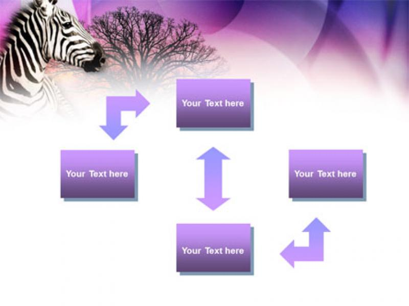 Zebra In Sunset Free PowerPoint Template  00845   Wallpaper Backgrounds