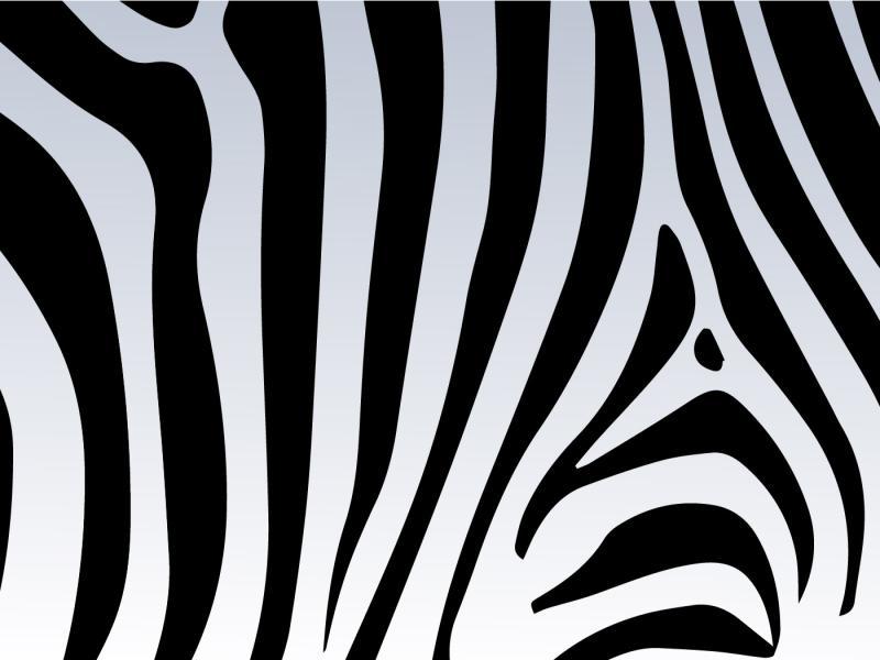 Zebra print vector free vector art stock clip art backgrounds for zebra print vector free vector art stock clip art backgrounds toneelgroepblik Choice Image