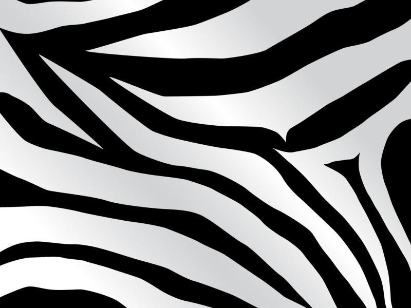 Zebra Slide Backgrounds