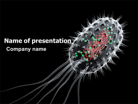 Download free bacteria cell powerpoint template 03573 slides ppt bacteria cell powerpoint template 03573 slides ppt backgrounds toneelgroepblik Choice Image