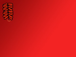 chinese for free chinese new year photo ppt backgrounds