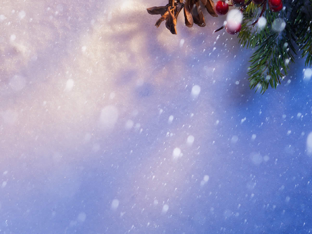 Holiday Christmas Image Backgrounds For Powerpoint Templates