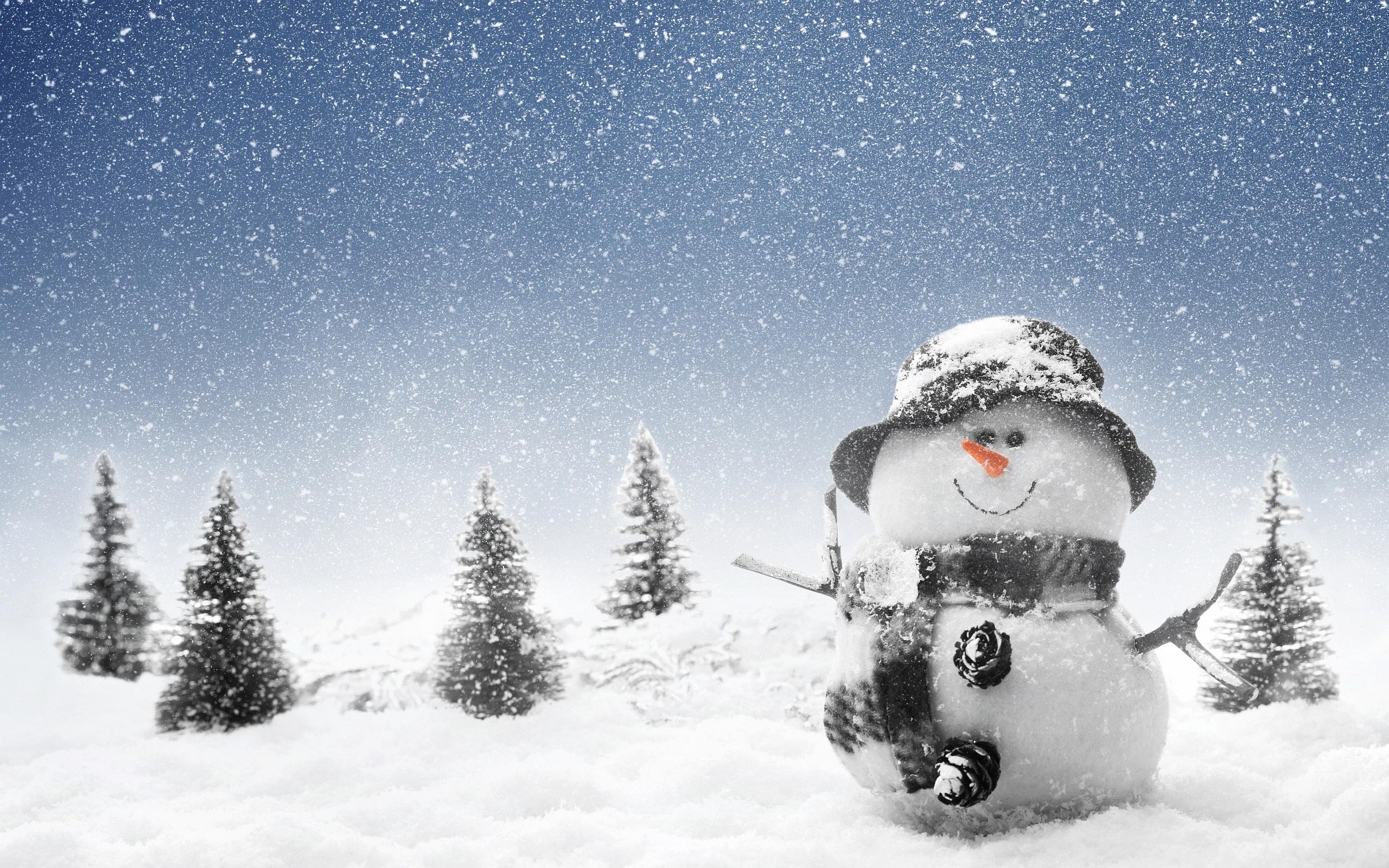 Winter Snowmans Pictures Photos Images Picture PPT Backgrounds